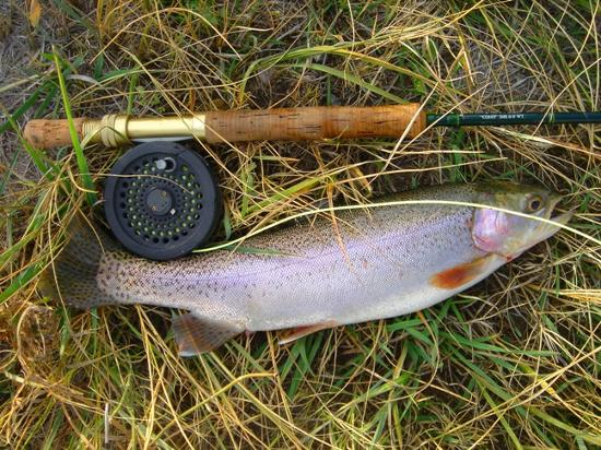 Big Trout Ranch Small Pond Wife Pam Picture Of Big Trout Ranch Twin Bridges Tripadvisor