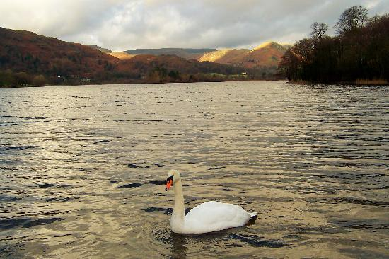 Ambleside, UK: Rydal