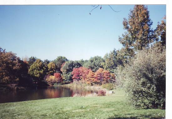 Lisle, IL: Arboretum in Fall