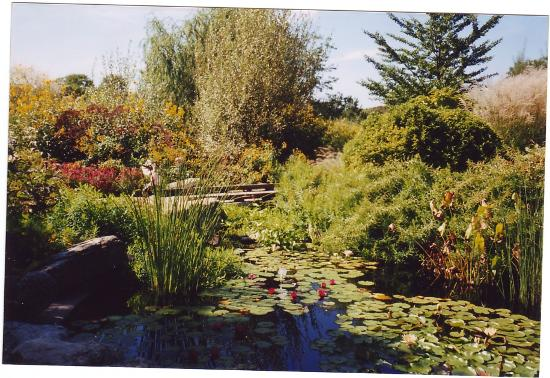 Where Am I Really Picture Of Olbrich Botanical Gardens