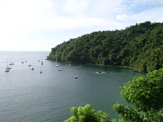 Tobago: pirates bay