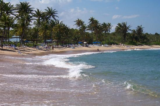 Dorado, Puerto Rico: Beach