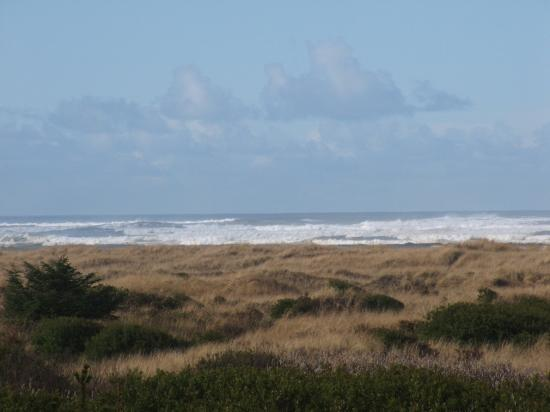 Photo of The Nautilus Ocean Shores