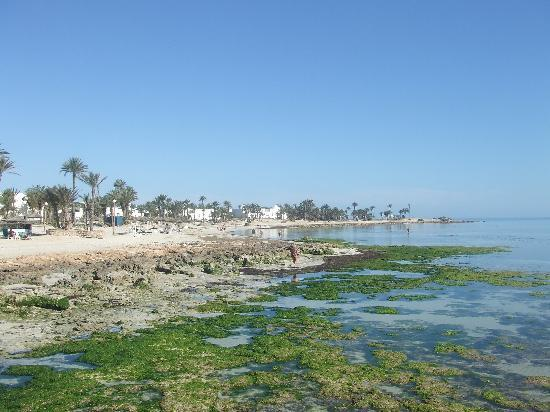 Midoun, Tunisia: Jerba Menzel Hotel Beach
