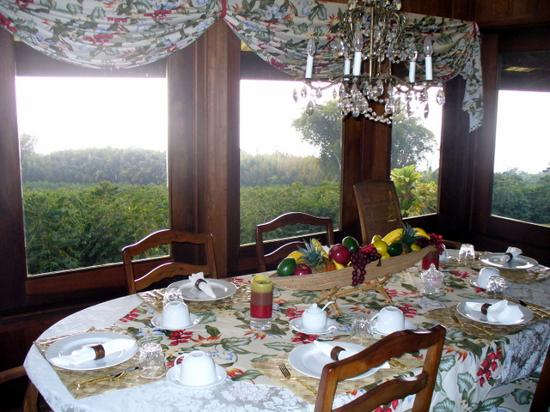 Cedar House Bed and Breakfast: Breakfast room and coffee trees