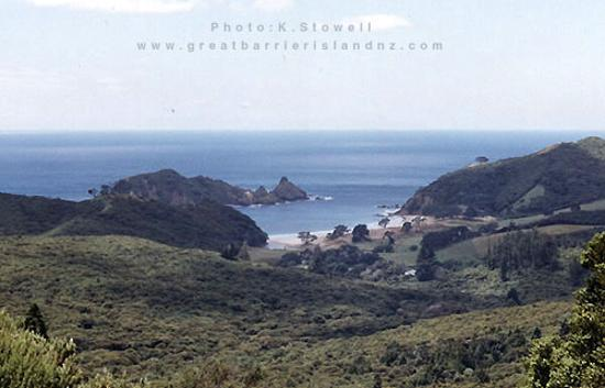 ‪Great Barrier Island‬