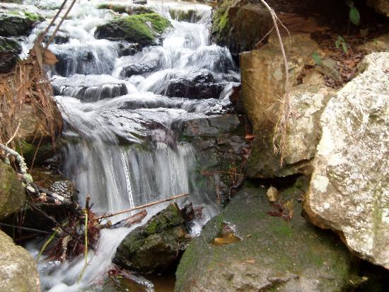 Pine Mountain, GA: Waterfall along the