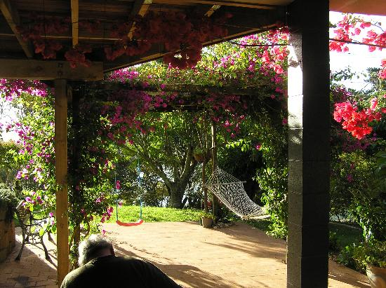 Whitianga, Nowa Zelandia: Garden @ Bougainvillea suite