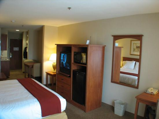 Holiday Inn Express Hotel & Suites Carson City: TV Fridge and Microwave