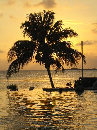 Cabo Rojo,  : sunset by pool