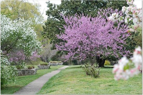 Richmond, VA: Maymont Grounds