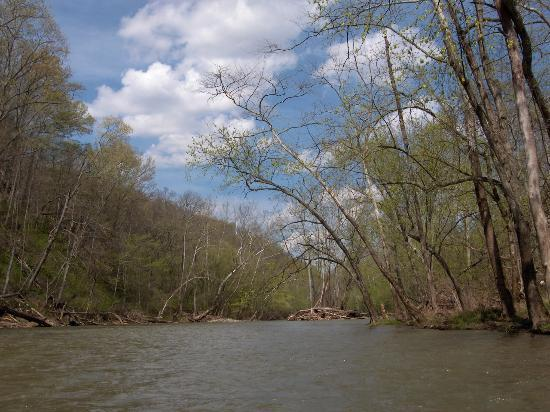 Frankfort, KY: The view from the water...
