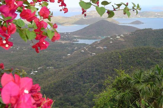 Cruz Bay, St. John: View from Mt Bordeaux