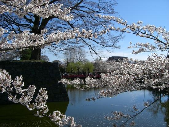 Garden of Matsumoto Castle