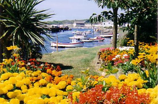 Hayle Harbour and Gardens