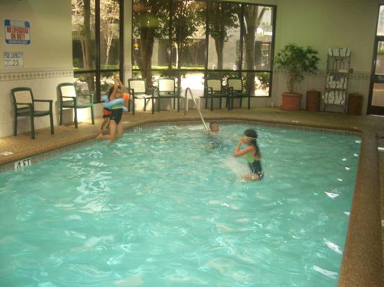 Beautiful oc view picture of embassy suites hotel irvine - Menzies hotel irvine swimming pool ...