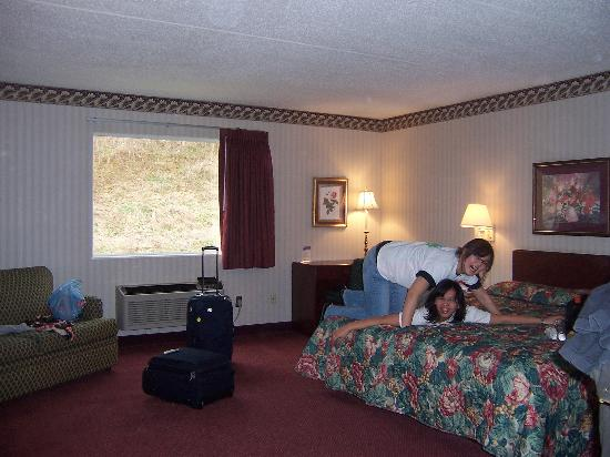 New Stanton (PA) United States  City pictures : Comfort Inn: The big is THIS big!