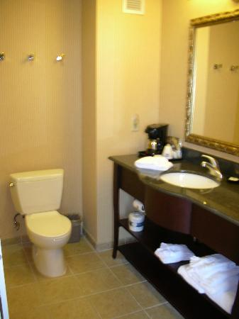 Hampton Inn & Suites Sacramento Airport Natomas: Bathroom