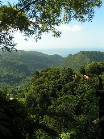 Dominica: From the mountains looking back toward Roseau