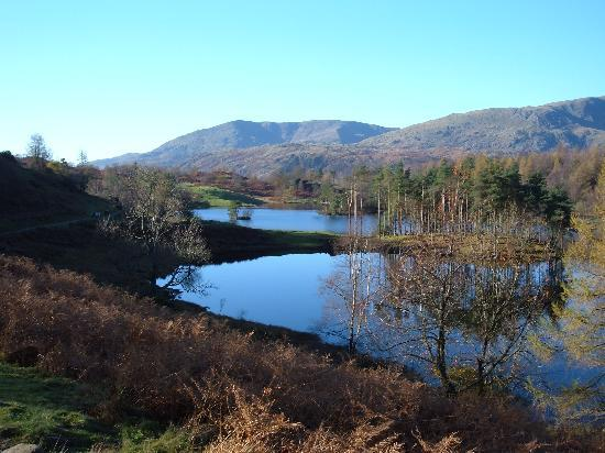 Windermere, UK: Tarn Hows