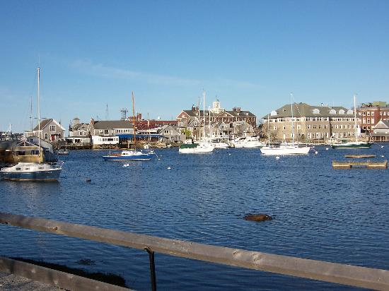 Eel Pond and Woods Hole