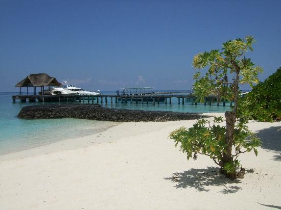 Kuramathi: Veiw from the bar