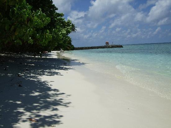 Kuramathi: Our 'private' beach