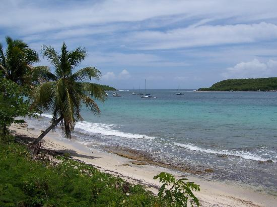 Humacao, Puerto Rico: Beautiful beach in Vieques