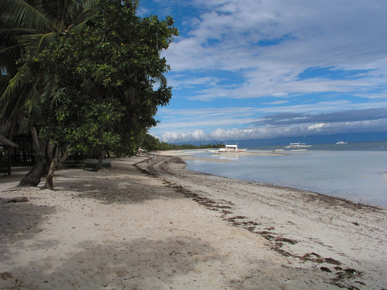 Panglao Island, Filipina: geart beach clean everyday