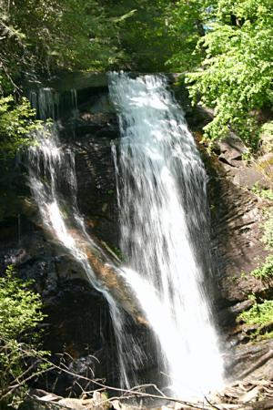 Tanglewood Cabins: Don't miss Anna Ruby Falls. It's gorgeous!
