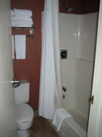 Holiday Inn Express Fairfax-Arlington Boulevard: Bathroom