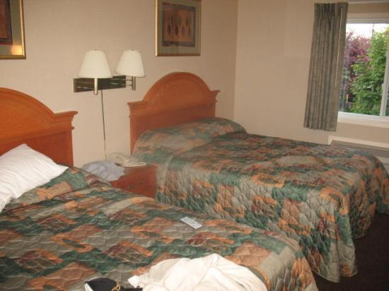Executive Inn and Suites: Beds in the bedroom