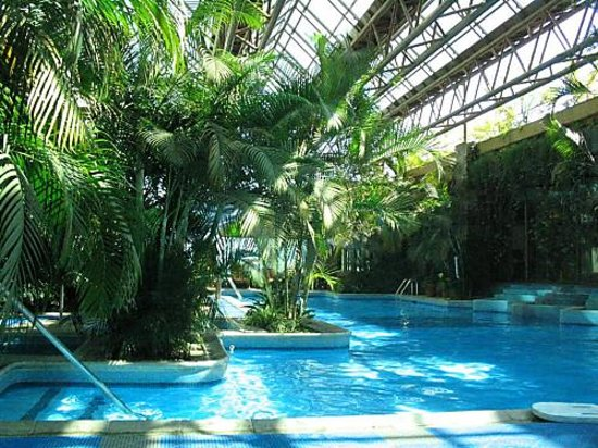 Grand Tikal Futura Hotel: pool