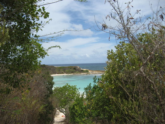 Antigua: Looking into Half moon Bay