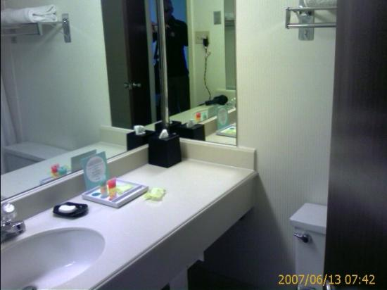 Four Points by Sheraton Denver Southeast: The TEENY bathroom