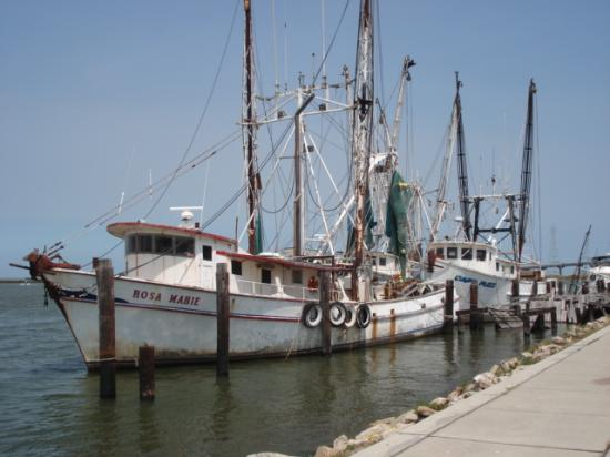 Apalachicola fishing boat near boss 39 picture of boss for Apalachicola fishing report