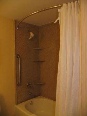 Hilton Garden Inn Lafayette/Cajundome: My favorite style of shower rod...curved!