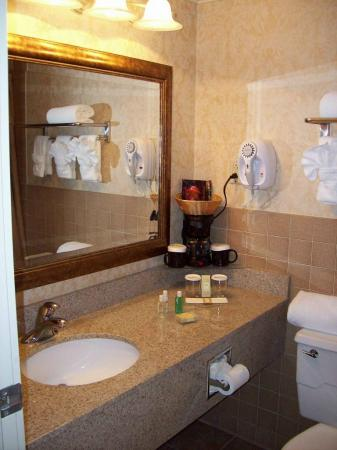 Radisson Hotel-Utica Centre: Bathroom