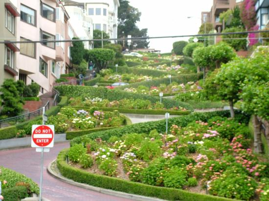 Lombard Street Crookedest Street Picture Of Hotel