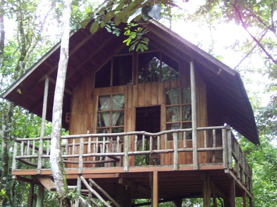Tree Houses Hotel Costa Rica : A lofty experience 