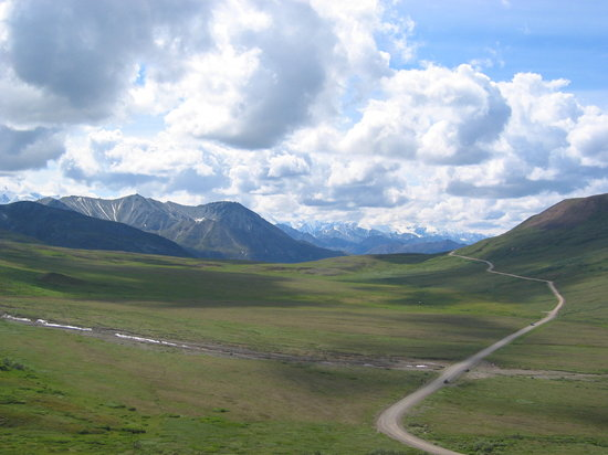 Denali National Park and Preserve, อลาสกา: Park road