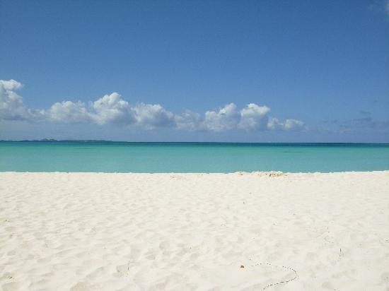 great beach hotel & Bankie Banx - Review of Rendezvous Bay, Anguilla -