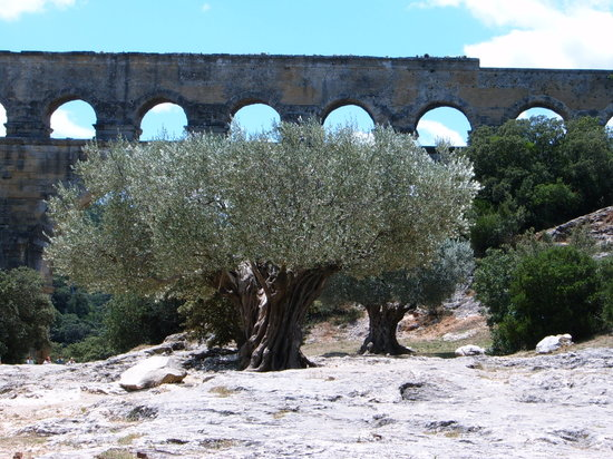 Nimes, : Pont du Gard