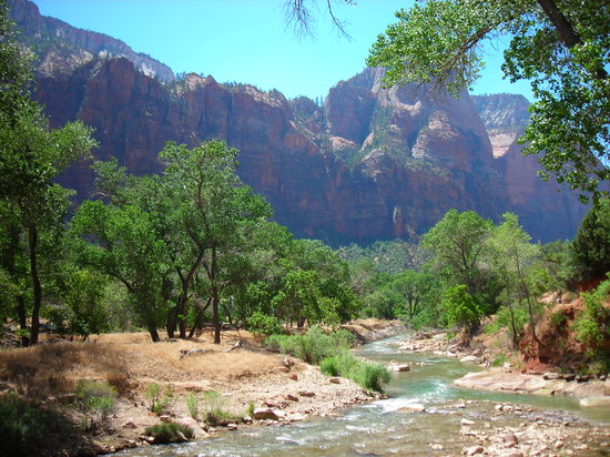 Springdale, UT: A view of Zion National Park