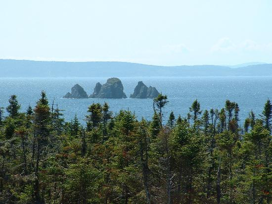 Whiteway, Canada: View from the Deck