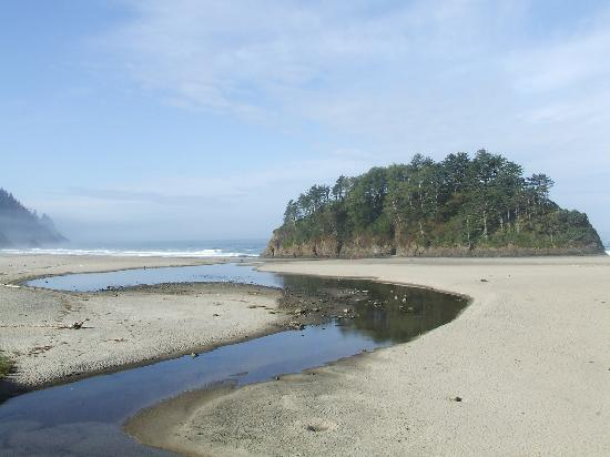 Neskowin Resort: view of river