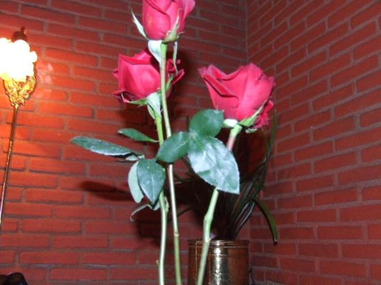 Hugo's Cellar: Roses at our table