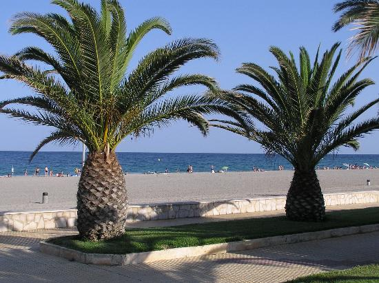 Miami Platja, Espagne : The beach 
