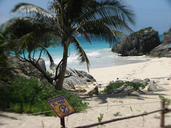 Puerto Morelos, Mexique : Beach at the Tulum ruins
