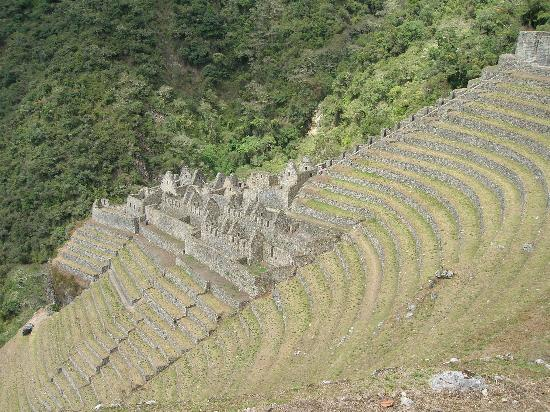 http://media-cdn.tripadvisor.com/media/photo-s/01/02/ff/13/winay-wayna-the-ruins.jpg